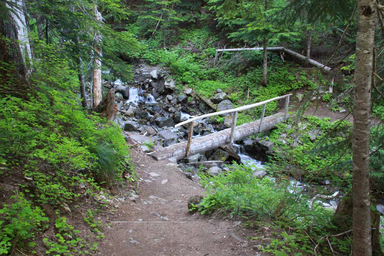 Crossing one of the narrow one-sided log bridges