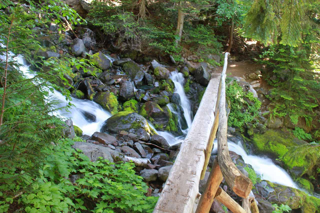 Another log bridge across a rushing creek on the Spray Falls Viewpoint spur trail