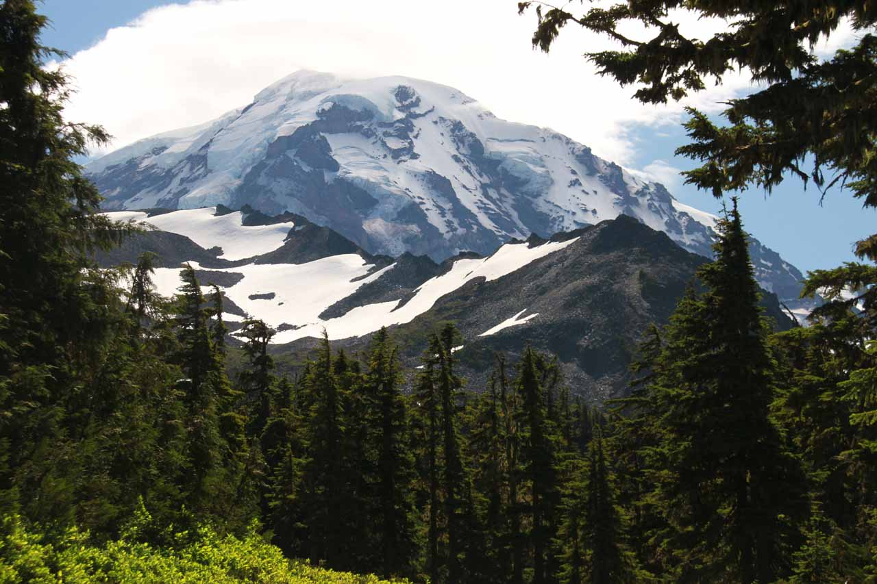 View of Mt Rainier's summit from Spray Park