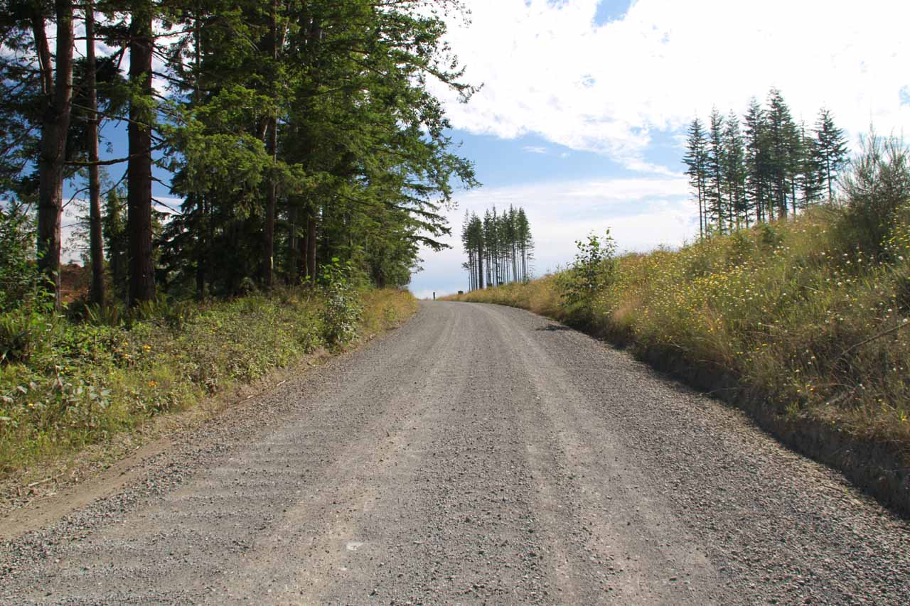 Gravel road to Mowich Lake