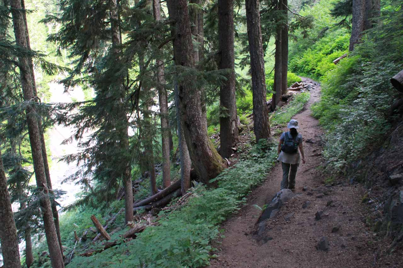 Trail alongside Van Trump Creek