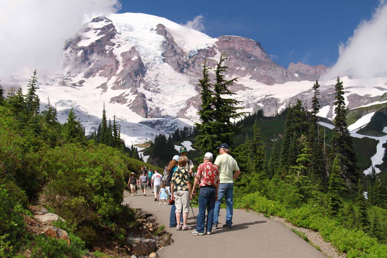 Mt Rainier looming large as we approached Myrtle Falls on the busy paved walkway