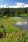 Rainier_498_08252011