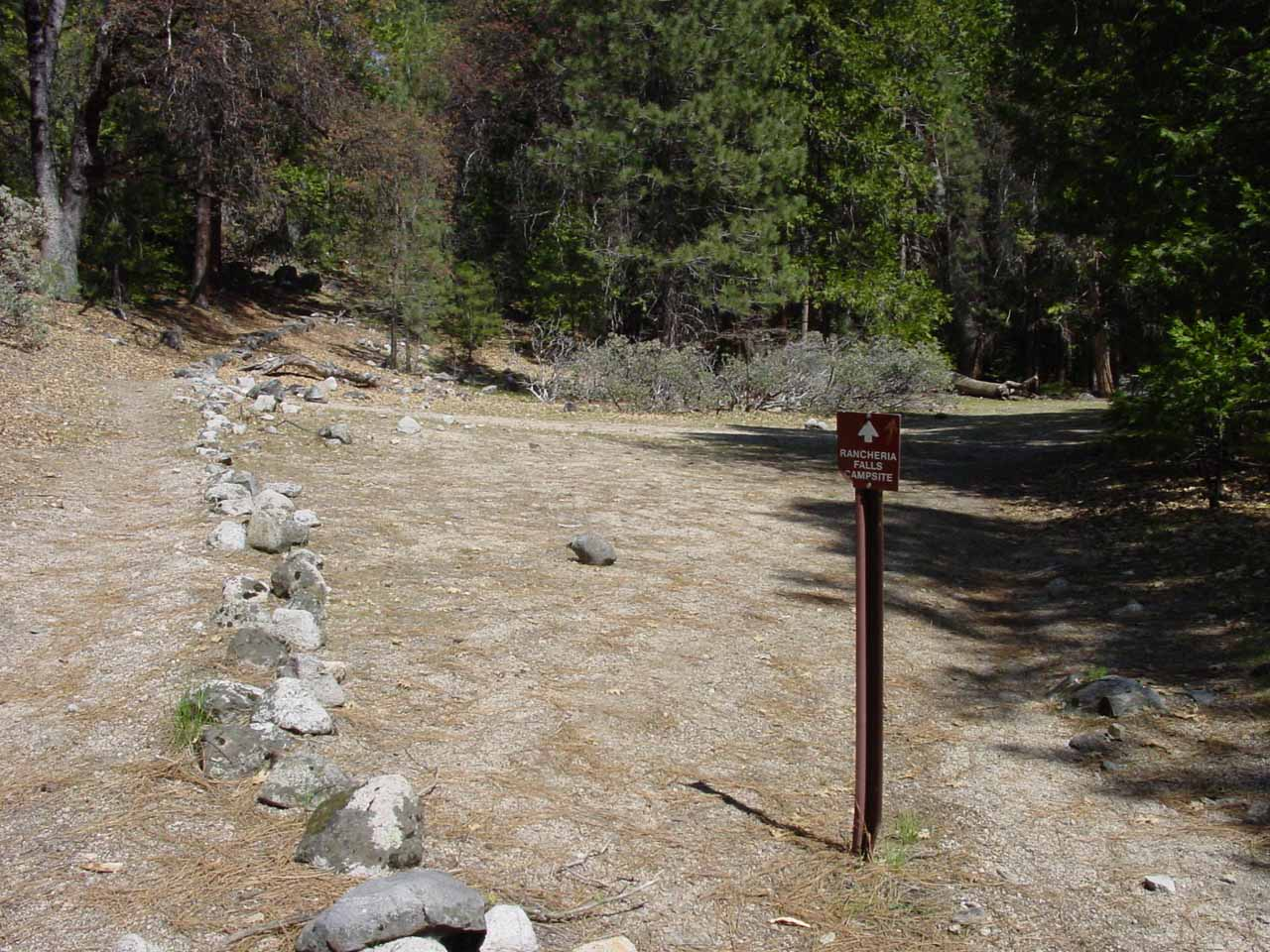 The fork in the trail where the left continued onwards while the right went to the backpacker's camp
