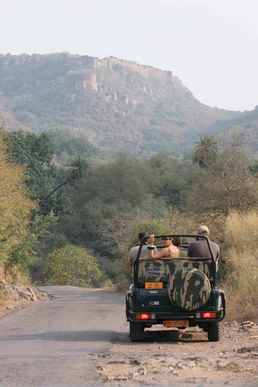 Ranthambore Fort in the distance beyond another safari jeep ahead of us