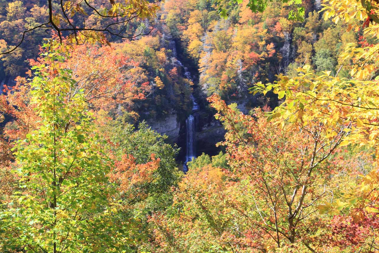 Raven Cliff Falls surrounded by Fall colors