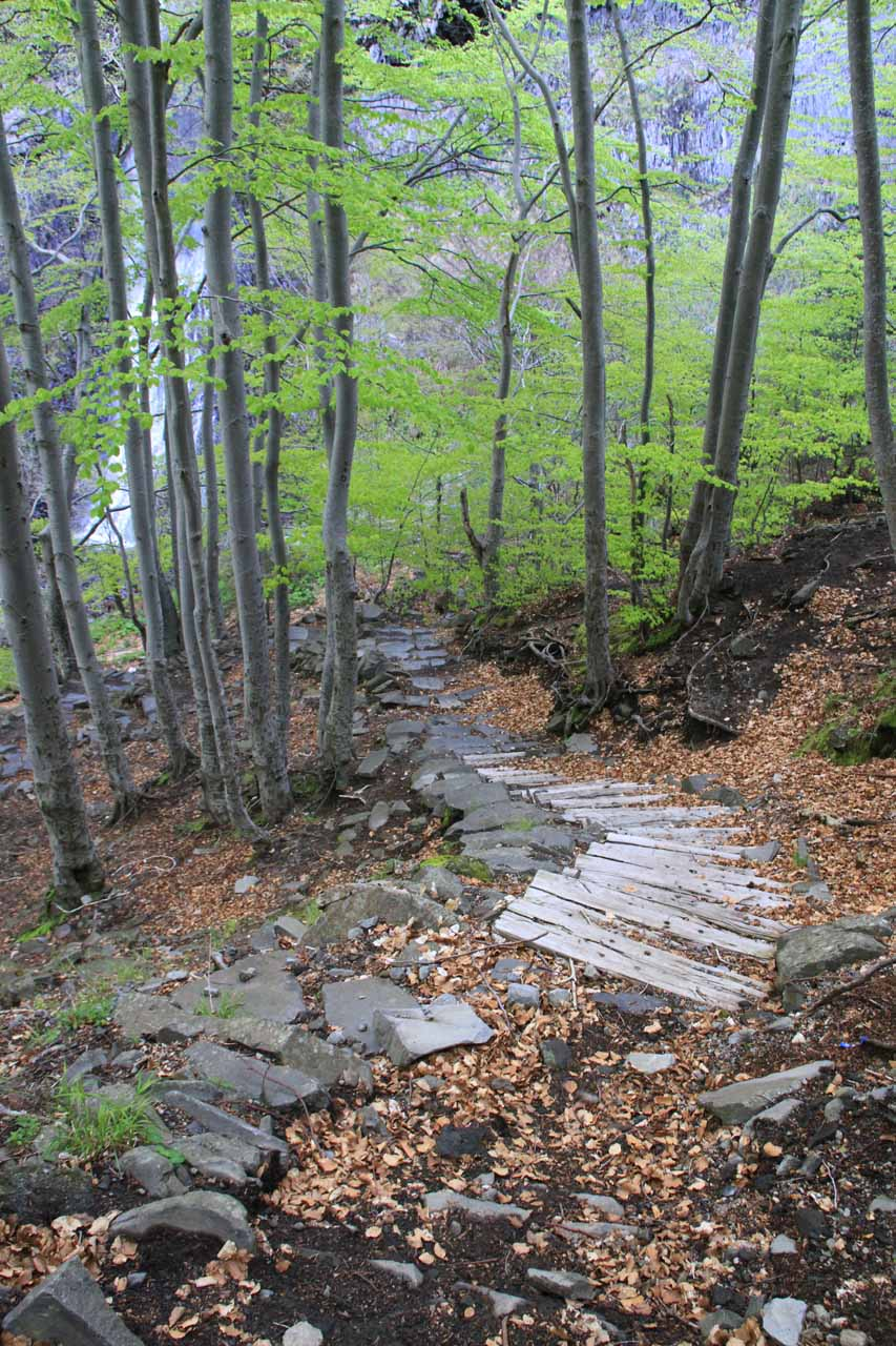 The trail leading to the base of Cascade du Ray-Pic