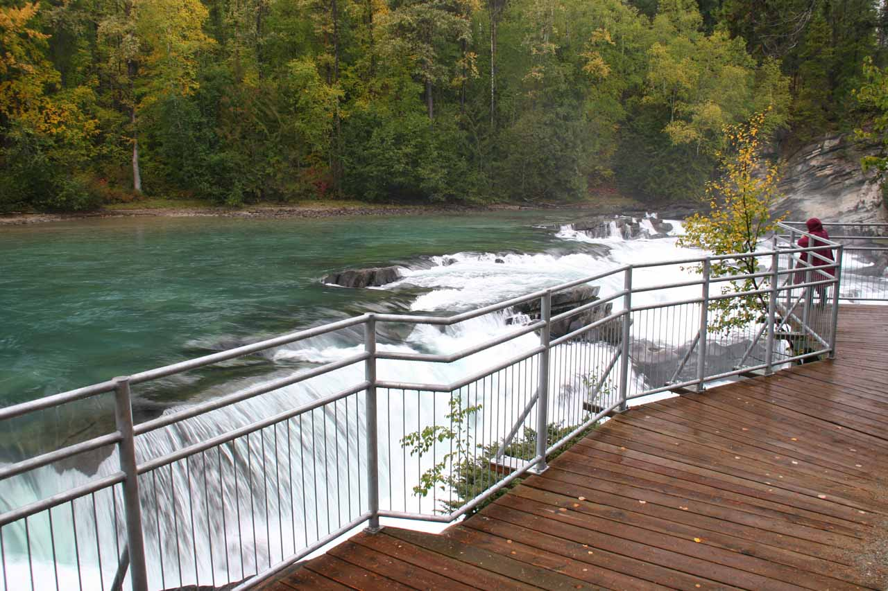 Contextual view of the viewing platform and Rearguard Falls
