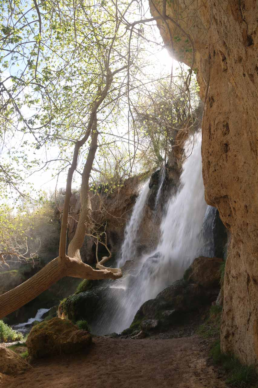 Looking back across Rifle Falls from the opposite side along the Coyote Trail