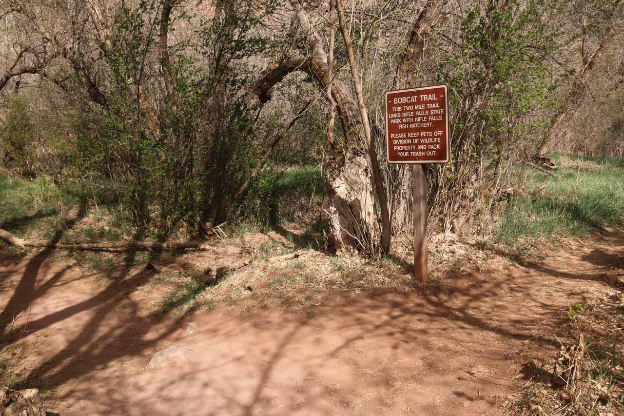 It was possible to branch off from the Coyote Trail to the Bobcat Trail if one were so inclined to spend more time here