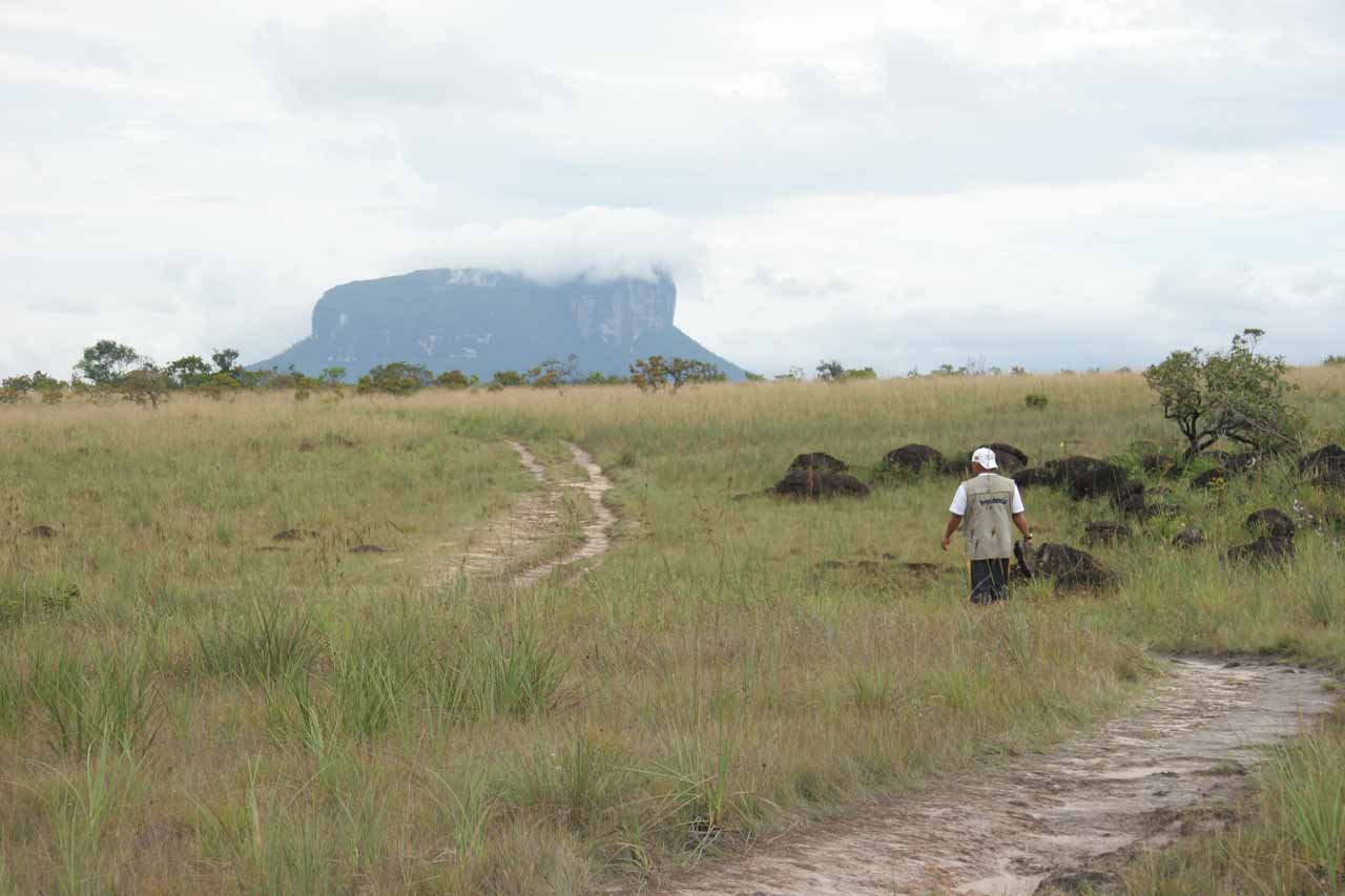 After visiting the Happiness Pool (returning from Angel Falls), we made a brief land traverse, which provided us with this view of the savannah with tepuys rising in the background