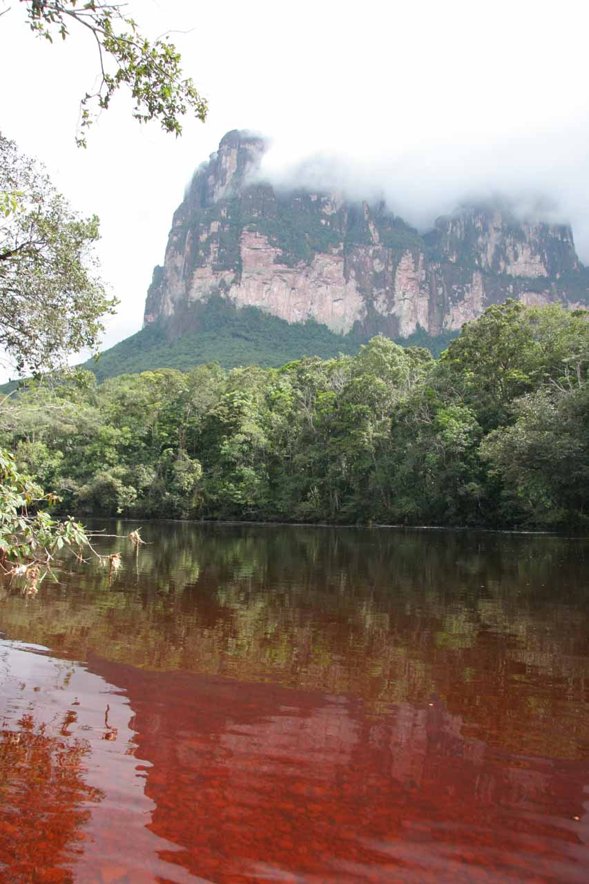 Well into the boat ride, we went into a different river called Rio Churun, and the water here looked blood red