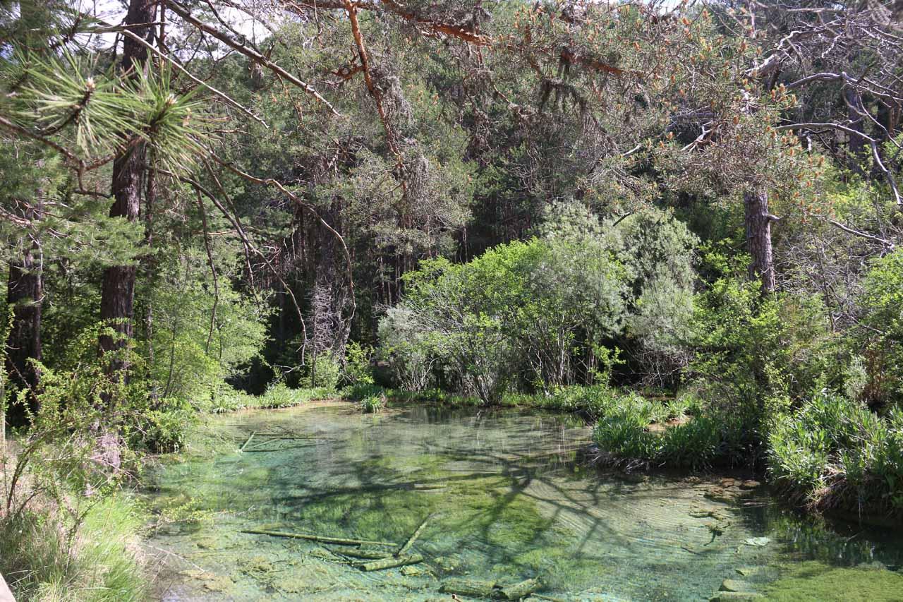 Closer look at the clear pools just downstream of the Cascada de Nacimiento del Río Cuervo