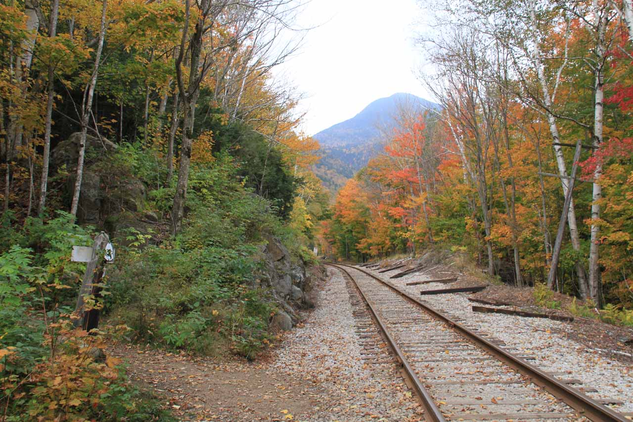 The trail continued on the other side of the railroad tracks