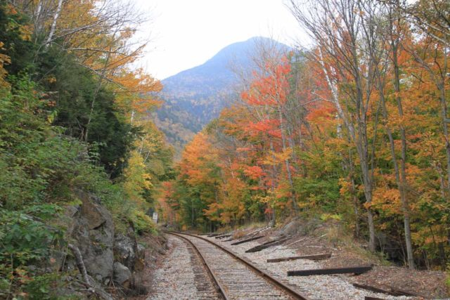 Ripley_Falls_008_10022013 - Looking down the railroad tracks flanked by beautiful Autumn colors and backed by what I think is Mt Willey