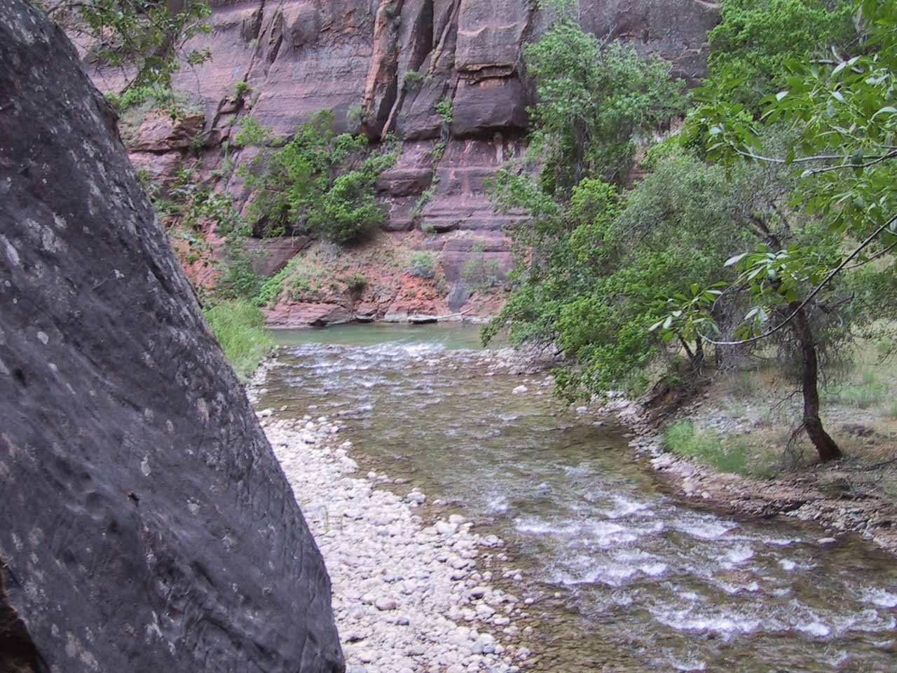 The Virgin River as seen from the Riverside Trail