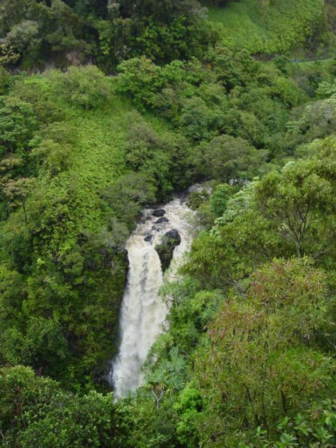 Road_to_Hana_018_09012003
