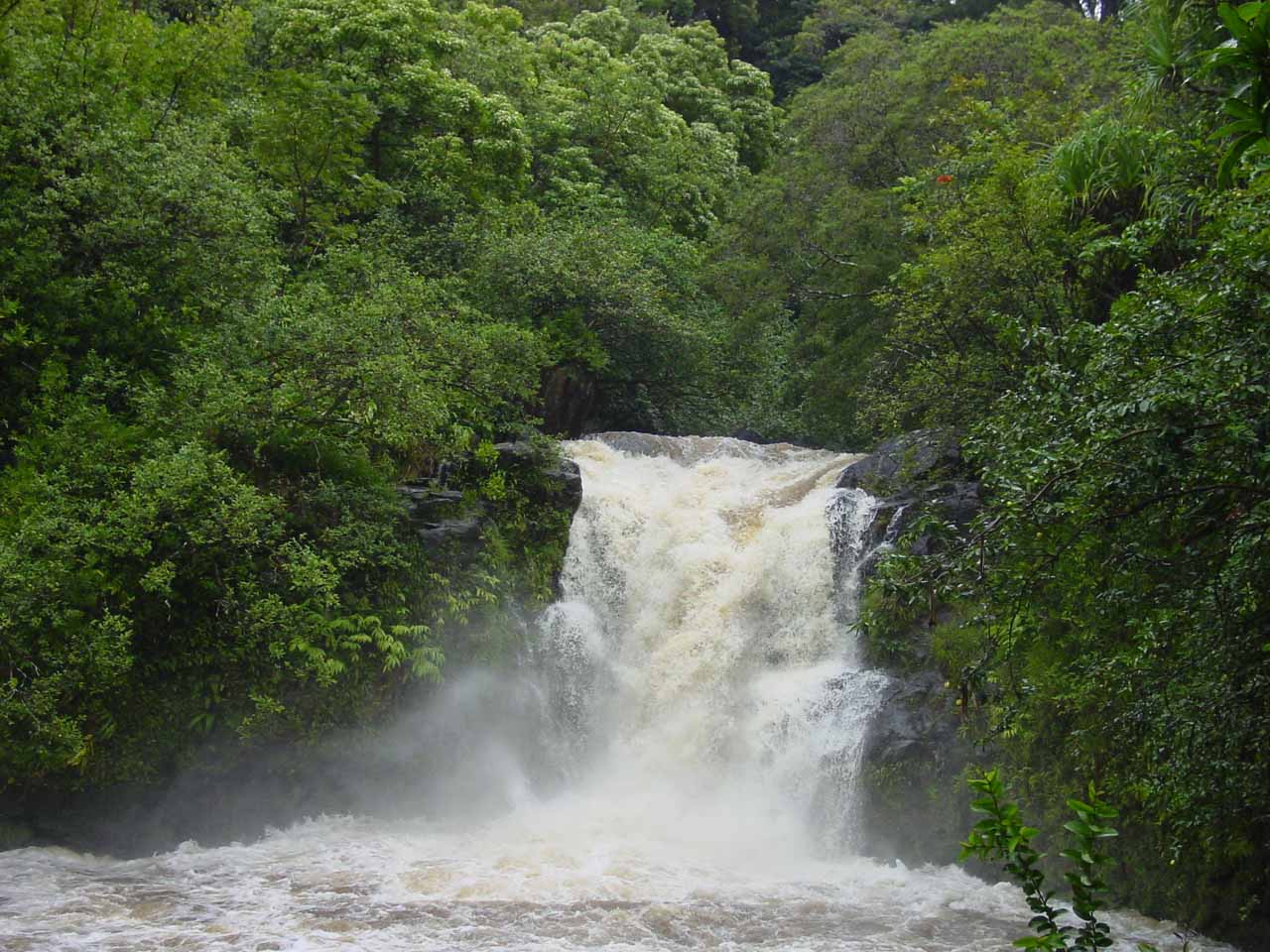 Upper Puohokomoa Falls in flood
