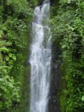Road_to_Hana_065_09012003