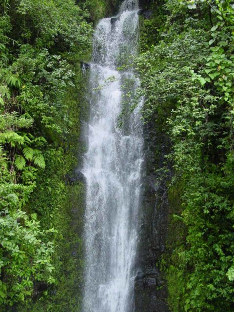 https://images.world-of-waterfalls.com/Road_to_Hana_065_09012003