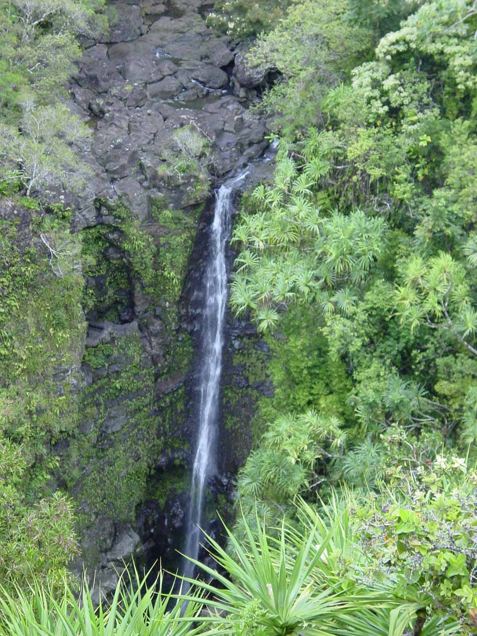 Lower Puohokamoa Falls just two days later from a better viewing spot