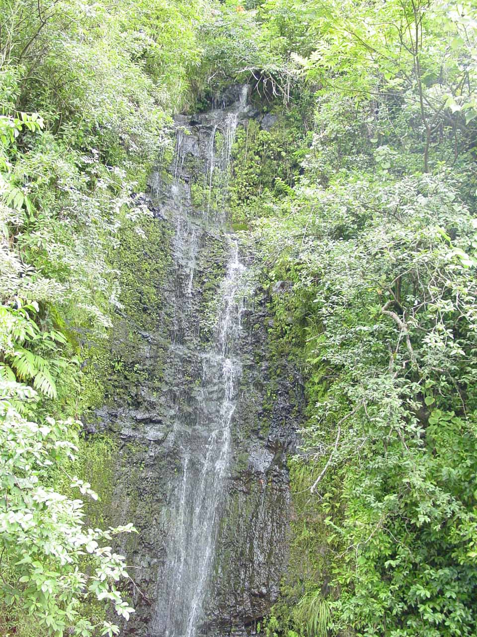Paihi Falls in low flow