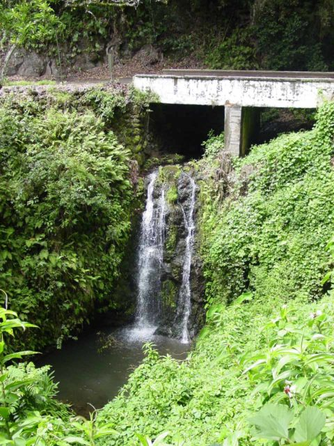 https://images.world-of-waterfalls.com/Road_to_Hana_163_09032003