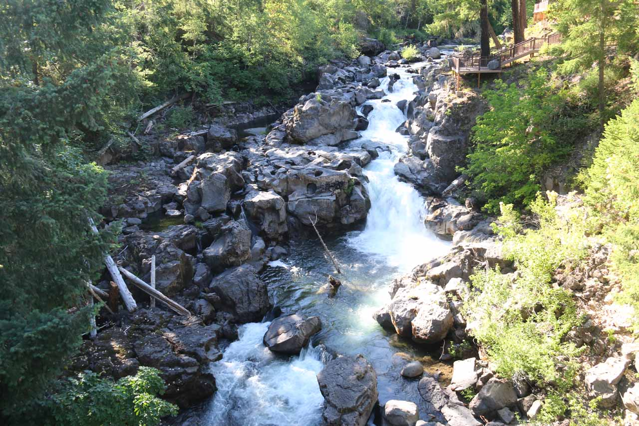 Just before we drove off to Medford, we stopped at the bridge over the Rogue River and got this view of the so-called 'Rogue Falls' immediately upstream from the bridge