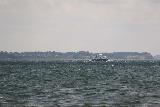 Rorvig_Hundested_ferry_017_07272019