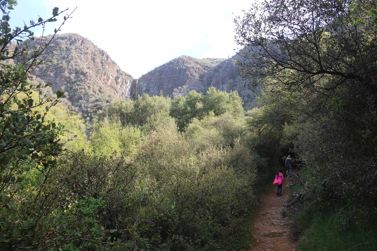 Context of the upper tier of Rose Valley Falls with the trail leading closer to the base of the falls itself