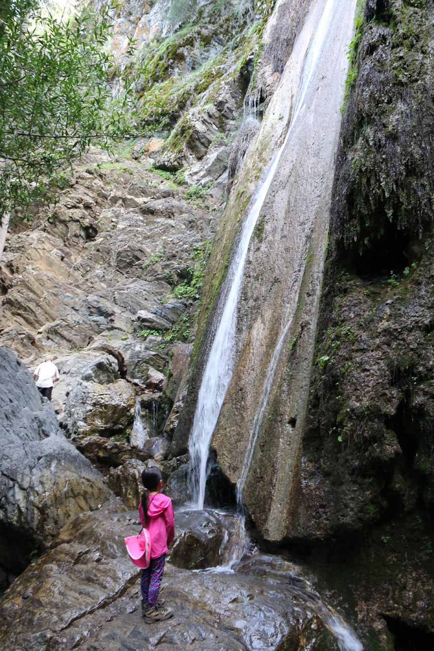 Tahia checking out the Rose Valley Falls