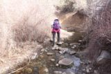 Rose_Valley_Falls_17_008_03192017