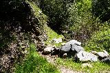 Rubio_Canyon_056_04142020 - Momentarily regaining some kind of trail during the stream scramble up to the Rubio Canyon Falls