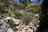 Rubio_Canyon_068_04142020 - Continuing on the upstream scramble past the Rubio Pavilion as I was getting closer to the base of the Rubio Canyon Falls