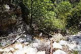 Rubio_Canyon_133_04142020 - Scrambling back down in the stream while facing lots of water diversion pipes after having had my fill of the lowermost of the Rubio Canyon Falls