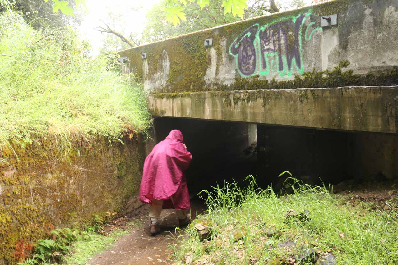 We then went underneath this underpass below Hwy 49 to get started on the Independence Trail West