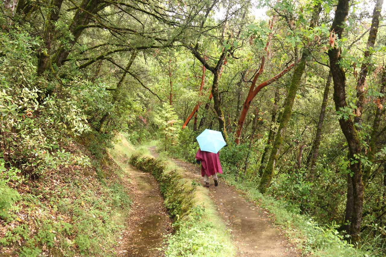The trail frequently split up into an upper foot trail and a lower ditch trail, which was more meant for wheelchair users