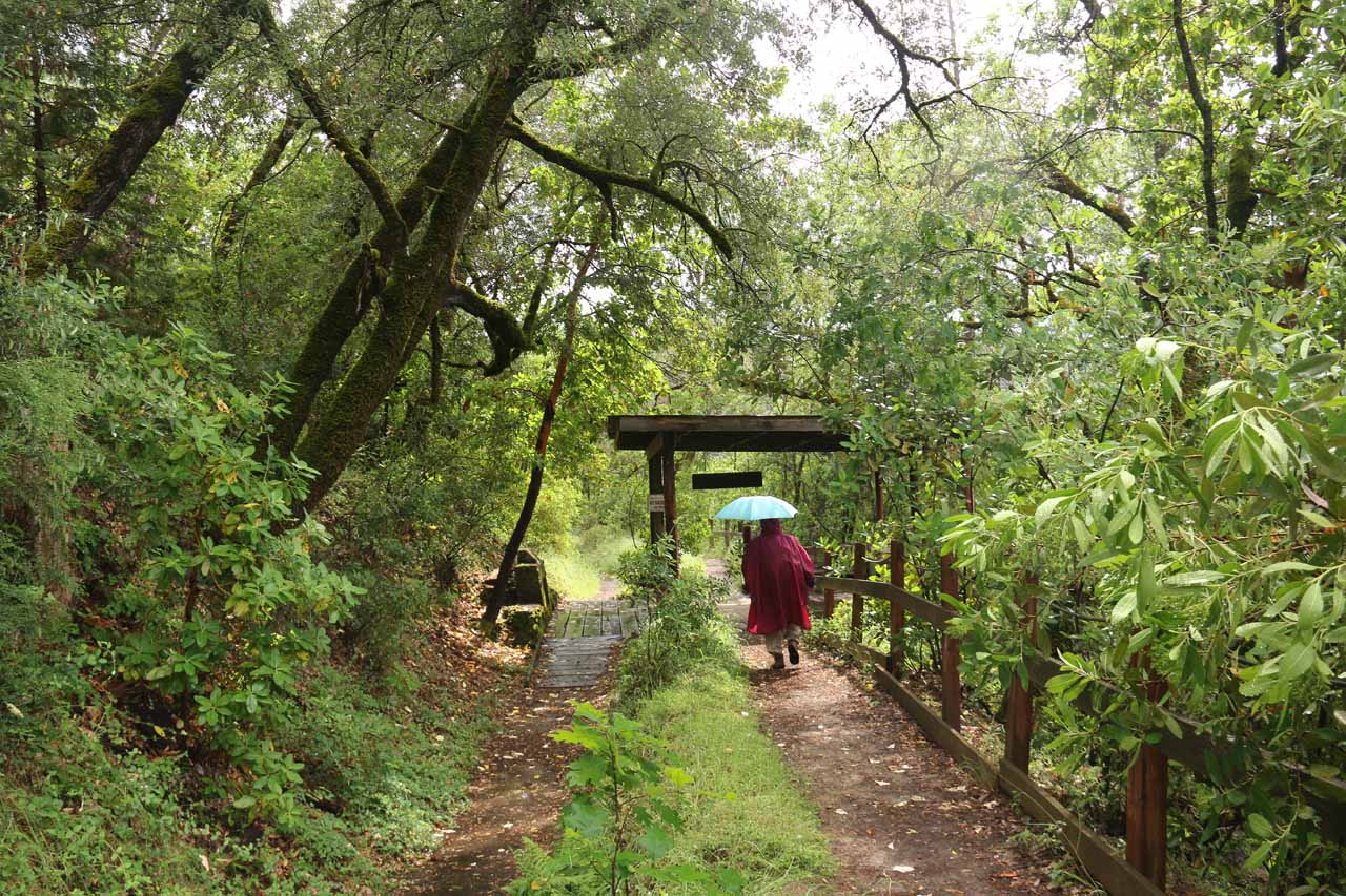 Approaching the South Yuba River Overlook on the Independence Trail West, which was roughly 0.4 miles from the underpass