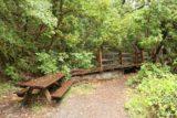 Rush_Creek_Falls_097_05202016