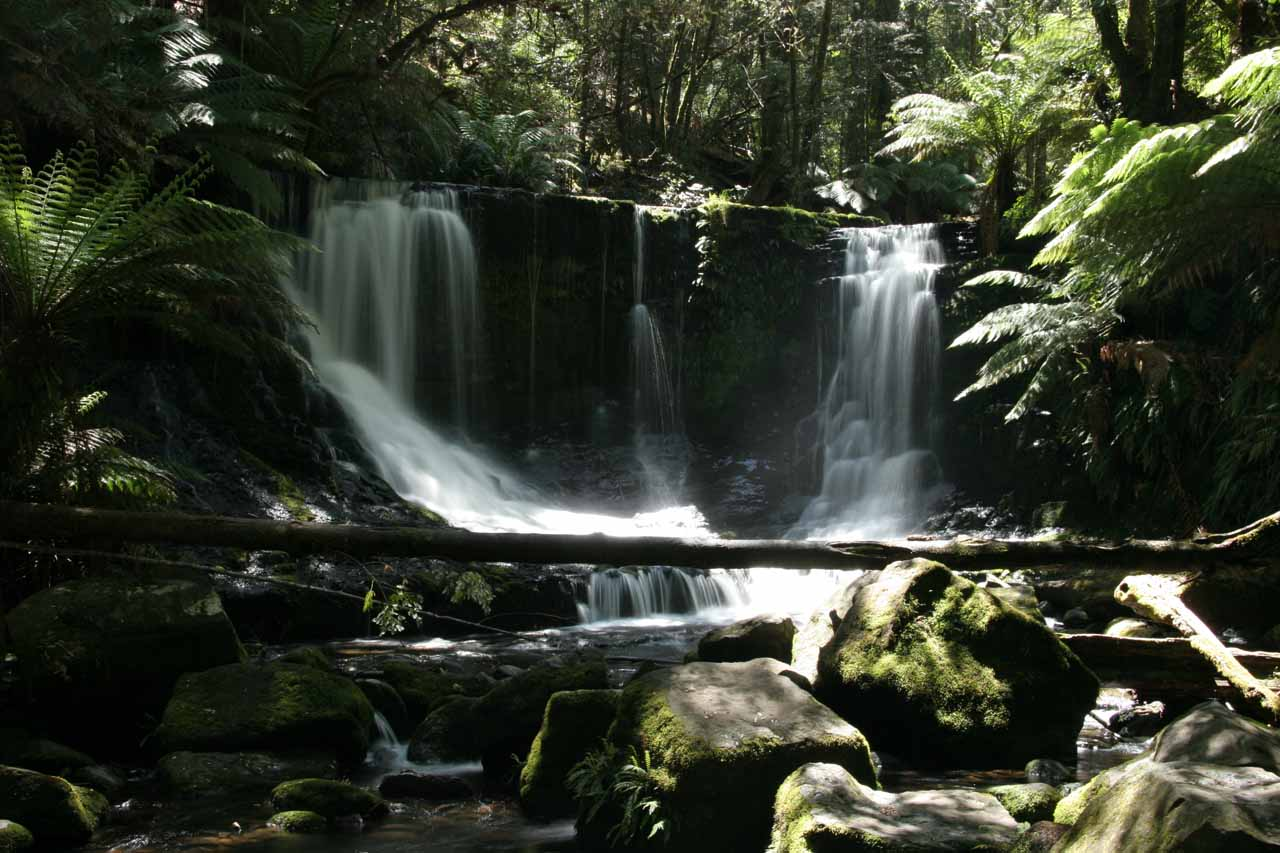 This was the Horseshoe Falls about 100m further upstream of Russell Falls.  It was well worth the one-hour return walk to check out this falls