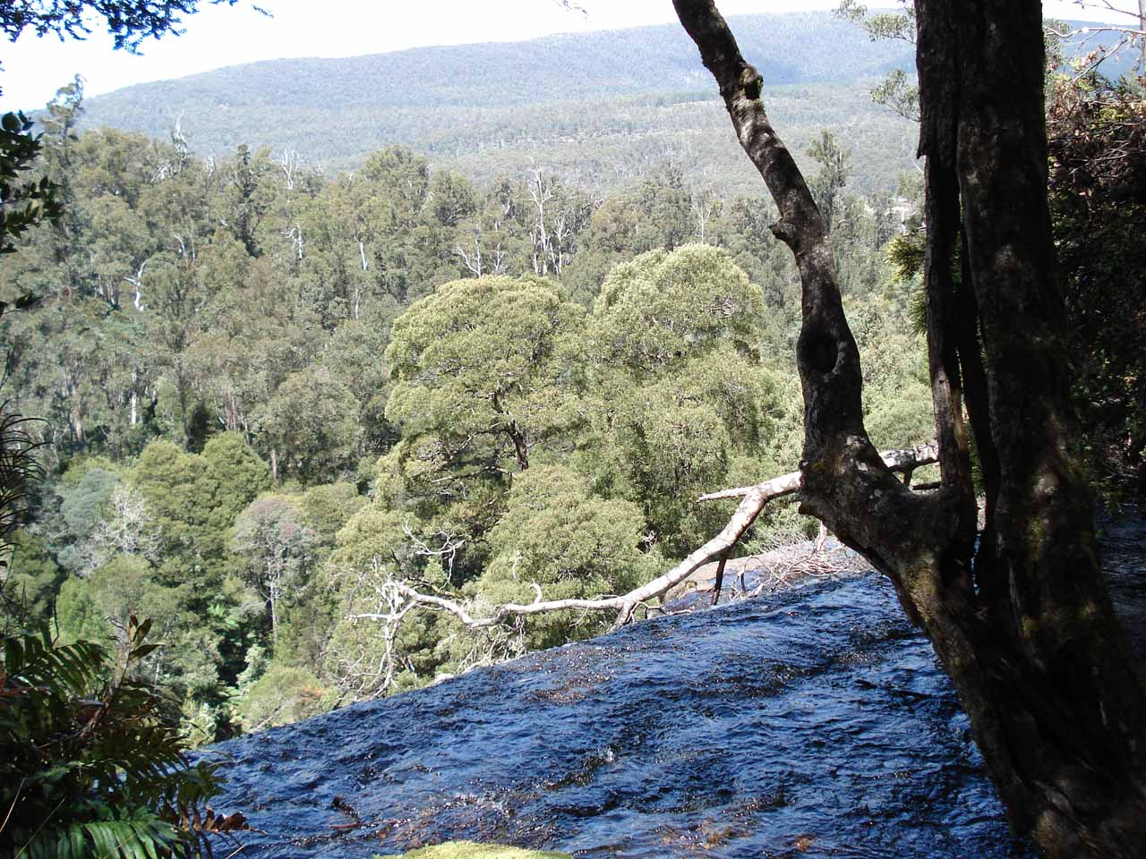 This precarious view was from the top of the Lower Russell Falls, which allowed me to see the forest of Mt Field National Park.  I was careful not to get too close to the edge though