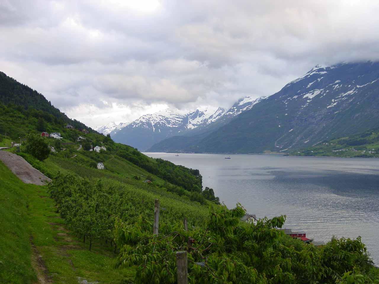 Looking along the eastern shore of Sørfjorden as we were headed to Ullensvang from Kinsarvik