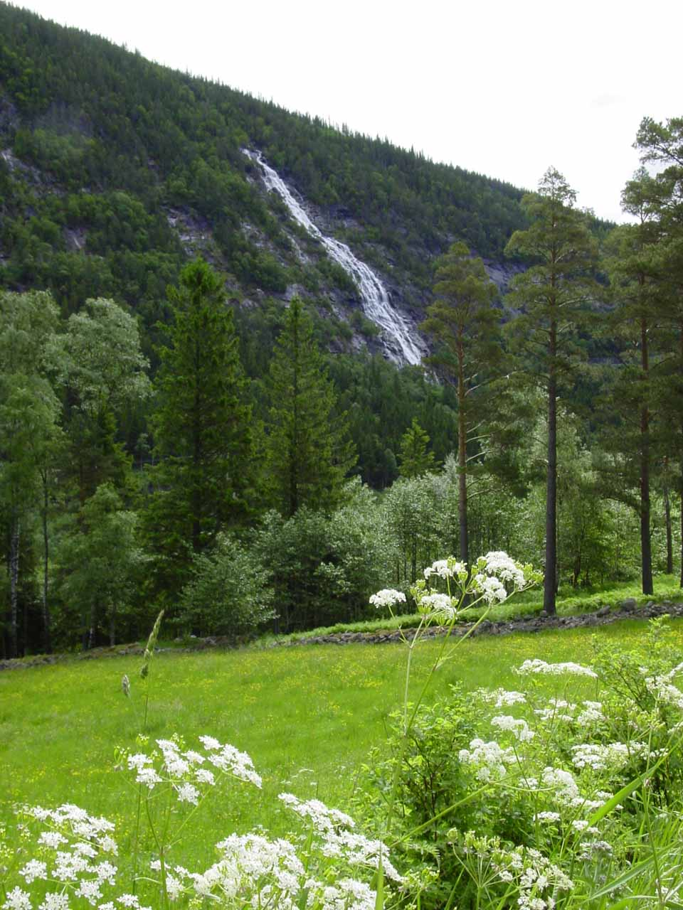 This was the first waterfall we saw along the Rv37 on the way to Rjukan (roughly 7km east of town)