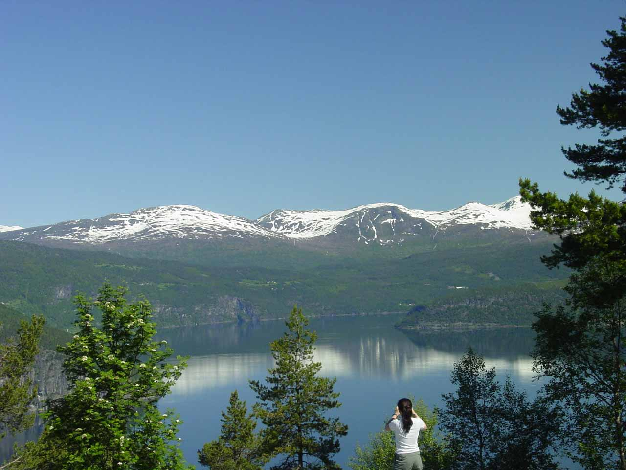 After visiting Myklebustdalen, we continued driving north of Byrkjelo where we got this view of Innviksfjorden (part of Nordfjorden)