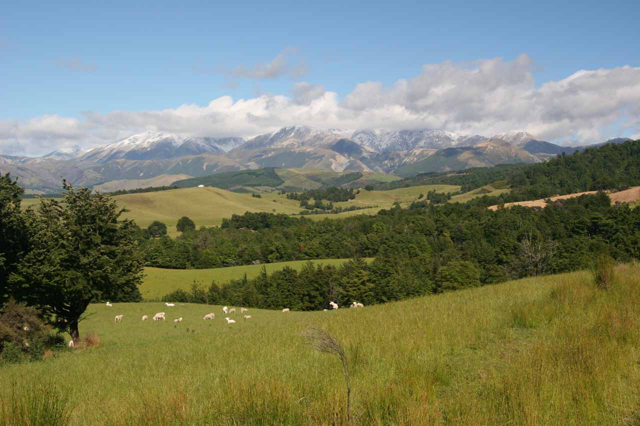 This was the broad expansive view over the paddocks on the way to the Ryde Falls Trailhead at the View Hill Car Park