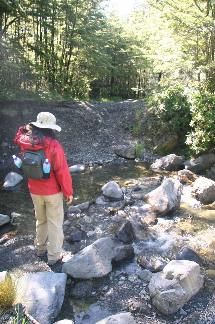 Julie crossing the creek