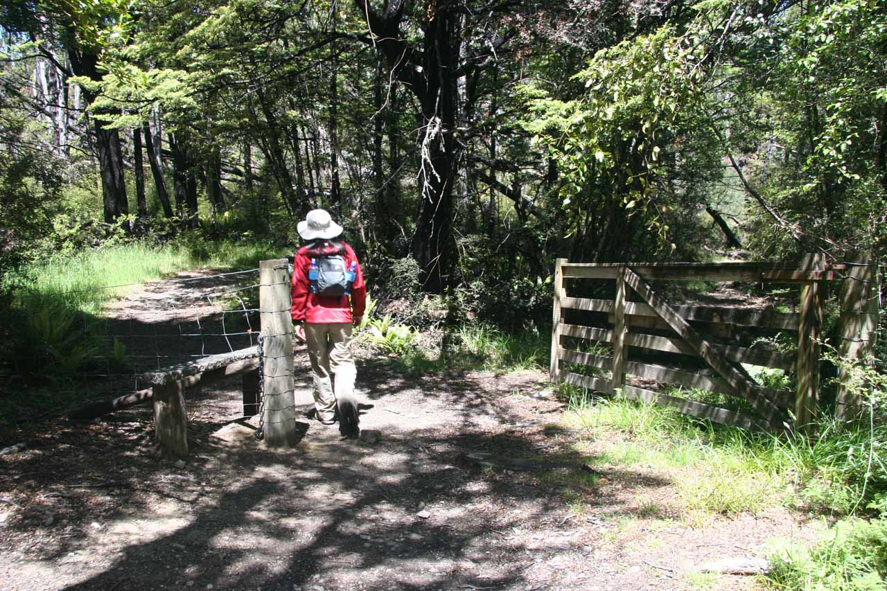 Julie going back through the fence marking the boundary of the Oxford Forest as we were making the return along the Wharfedale Track