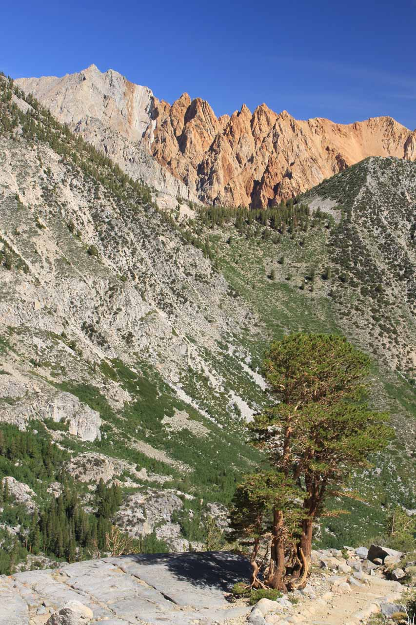 Reddish mountain