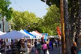 Sacramento_087_04102021 - Another look at the Midtown Farmer's Market in downtown Sac-town