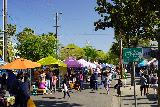 Sacramento_093_04102021 - Looking back at the increasingly bustling Midtown Farmer's Market in downtown Sac-town